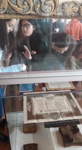 MuzejVojvodine04